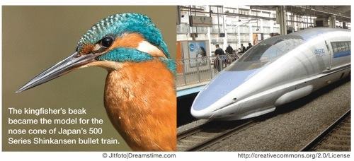 Kingfisher beak and bullet train